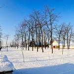 zimska_slika1